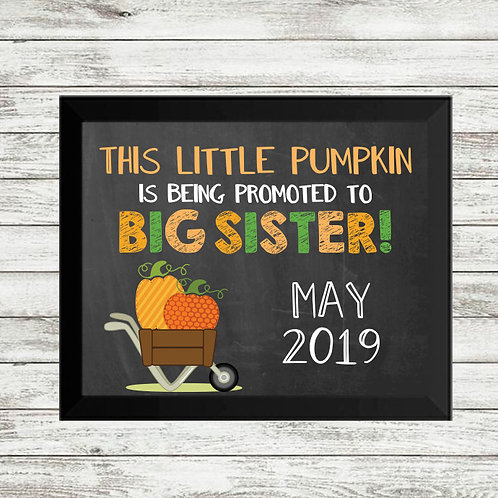Thanksgiving Pumpkin into Big Sister