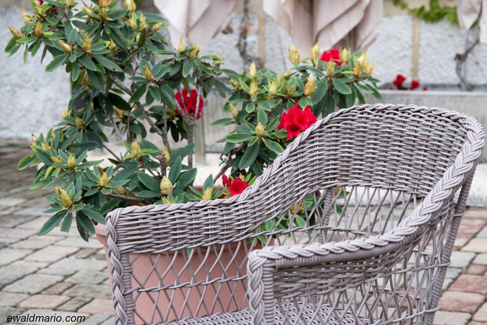 villa_cariola_05.02-04-3.jpg