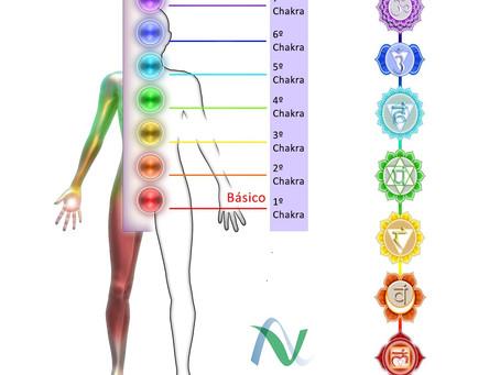 Os 7 Chakras: Como Alinhar E Manter Em Equilíbrio