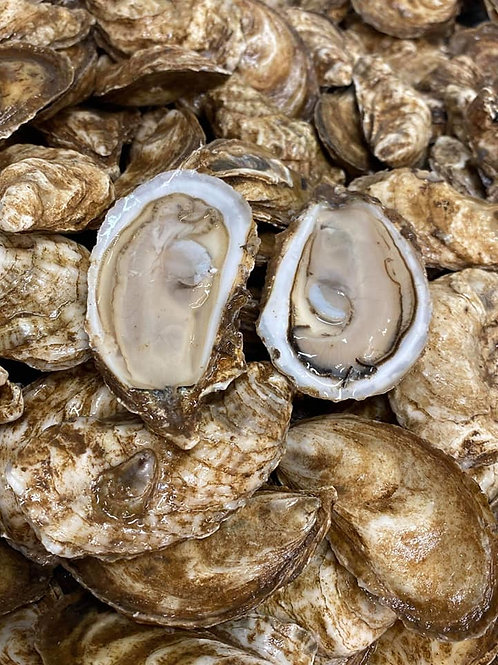 Little Shemogue Oysters + 1hr Shucking Service
