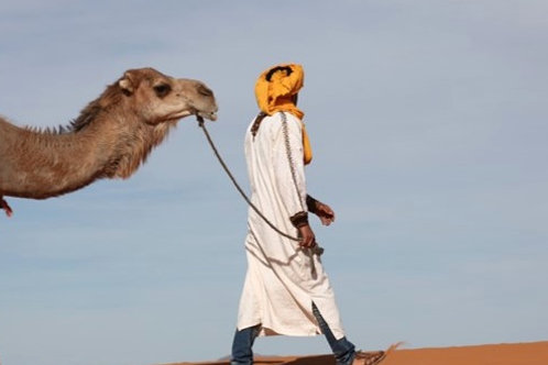Fes to Marrakech Desert Tour