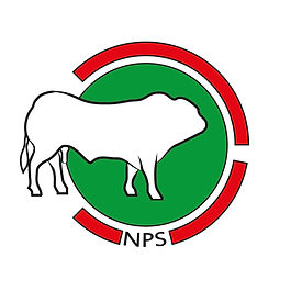 logo nps 2016V4 6-9-2017 Edessa DEF-02.j