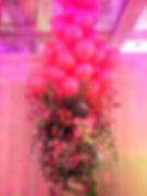 Large Display 1_edited.jpg