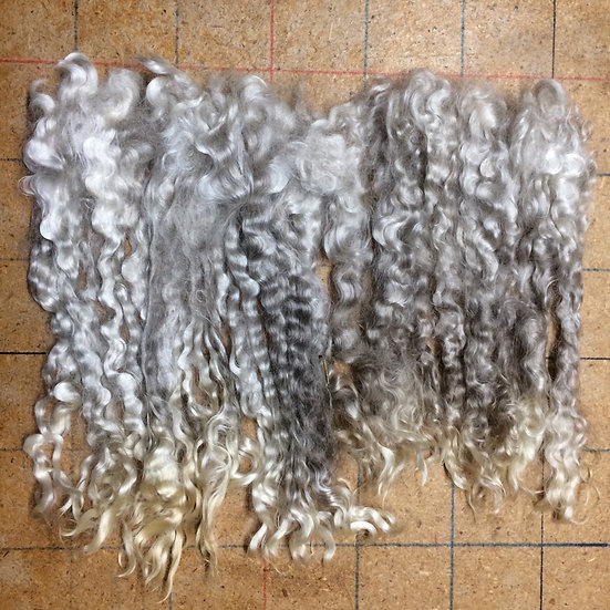 Unprocessed Mohair ~ Washed ~ Grey ~ 1 oz. ~ 8-10""