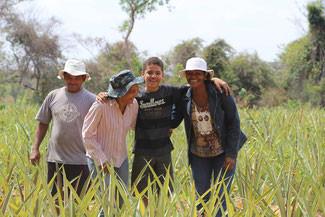 Produção agroecológica oferece alternativa de renda para famílias em Minas Gerais