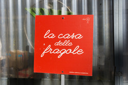 fragole (5)