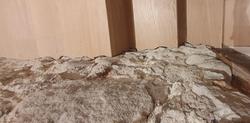 Aufwärts_Winkelstufe angepasst an Natursteinwand ab Werk