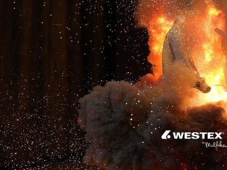 Westex® nos recomienda 3 Cuestionamientos al Desarrollar Nuestro Programa de Equipo de Protección