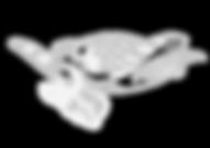 logo-Innovation-oceans-sans-plastique.png