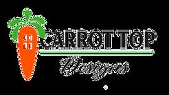 Carrot Top Designs Logo