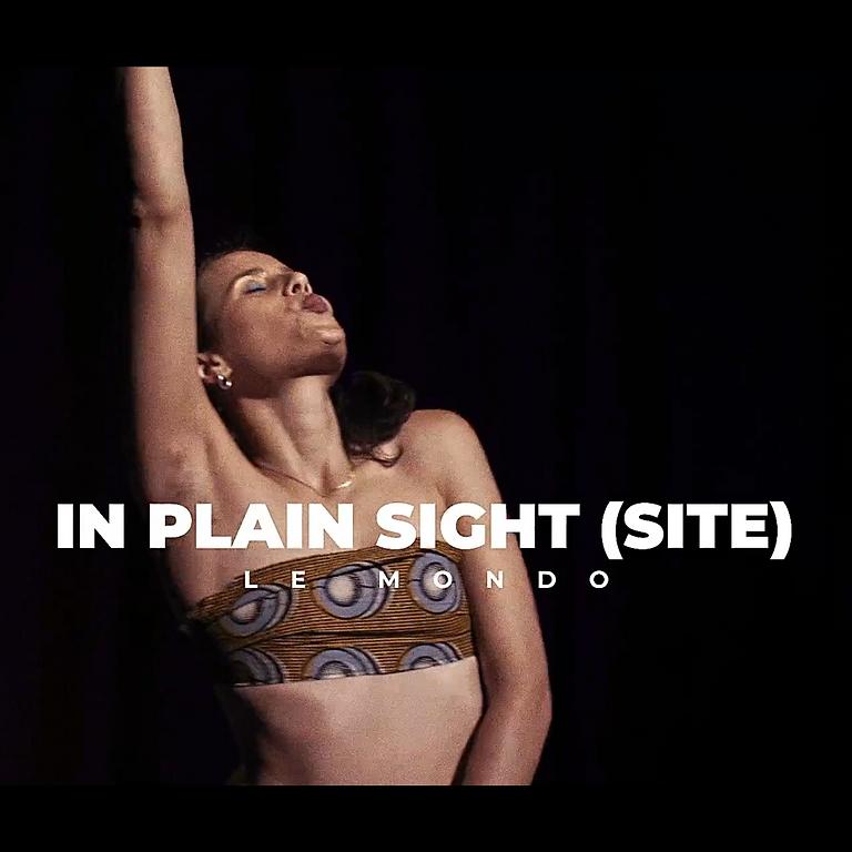 In Plain Sight(site)