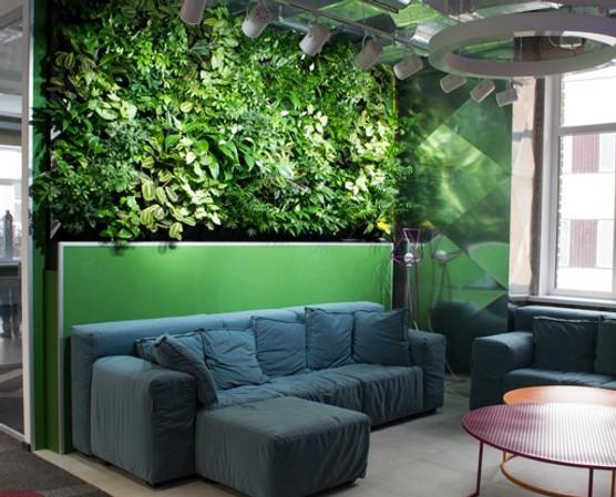 вертикальное озеленение, фитостена, зеленая стена, вертикальный сад, озеленение