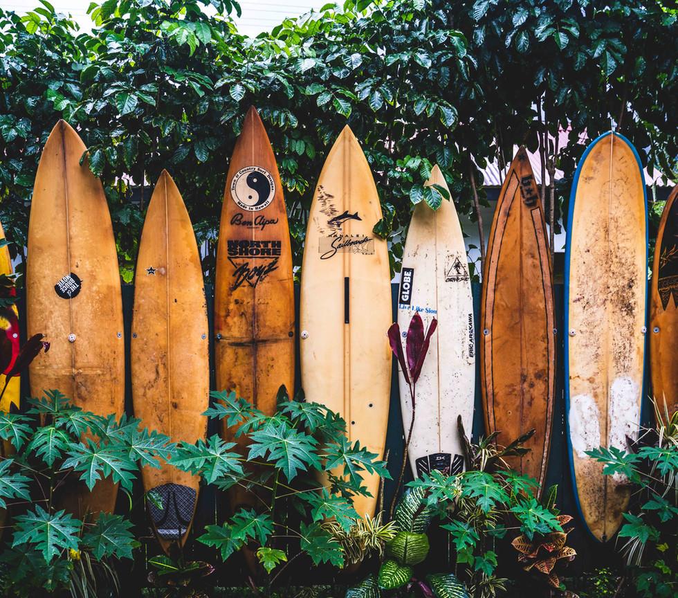 tatonomusic-surfboards_lowres.jpg