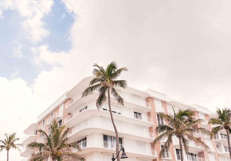 Arnel Hasanovic - Palm Hotel
