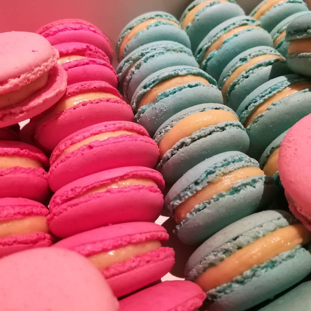 Macarons rose et bleu vanille intense