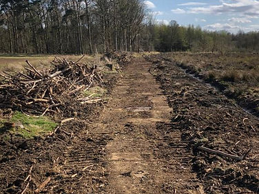 Forestry_Tracks_Drainage_Clearance.jpg