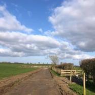 Site for New Access Road