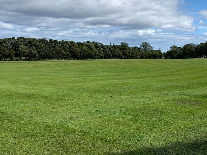 Landscaping Newcastle 28_7_20.jpg