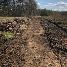 Forestry Track Drainage and Clearance