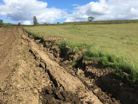 Drainage excavations for forestry track reinstatement