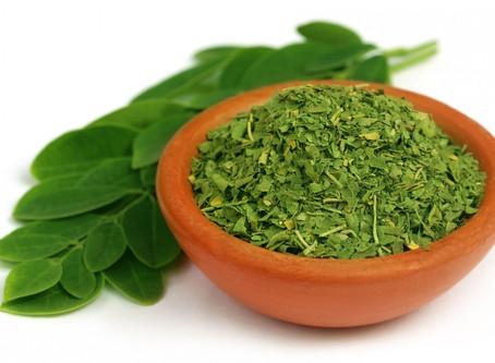 Moringa, il nuovo superfood