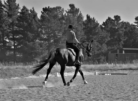 © Scott O'Malley Horsemanship