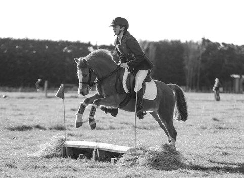 Toby - ridden by Charlotte Henshaw at his first ODE