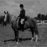 Scott O'Malley Horsemanship Ltd ©