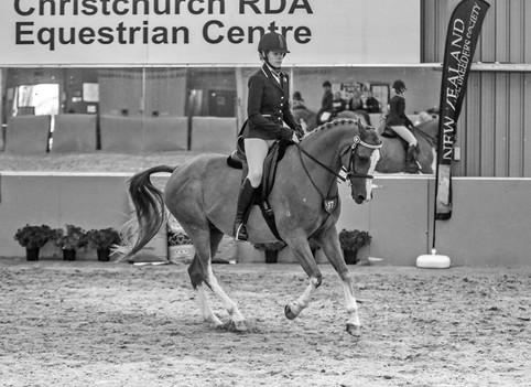Envy - SI Arabian Championships 2020
