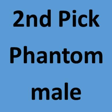 2nd Pick of Lottie's Male Phantoms