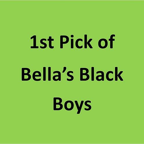 1st Pick of Bella's Black Boys