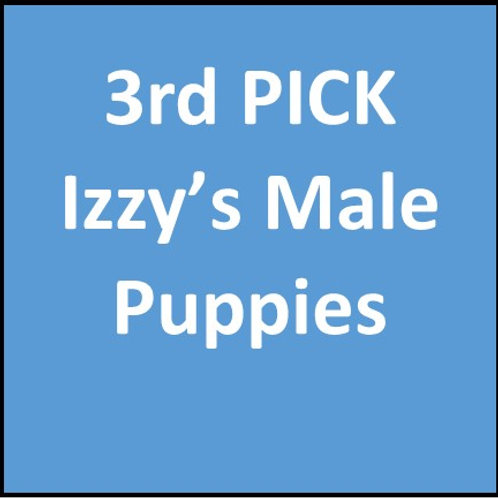 3rd Pick of Izzy's Males