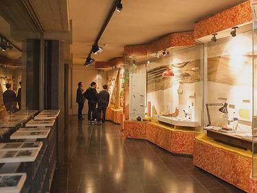 2018-10-12 Musee Gallo Romain ATH.jpg