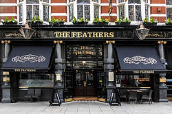 Feathers angol pub.jpg