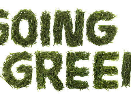 Are you going green in 2019?