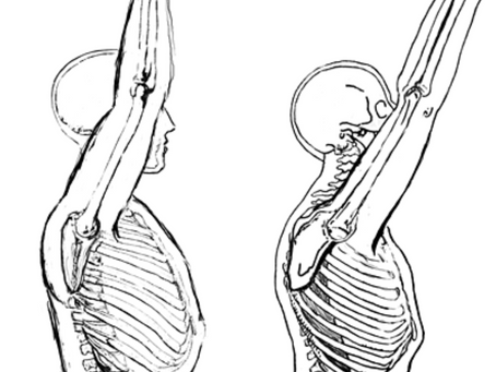 How to Address the Complexity of your Shoulder Joint