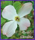 Quilt Carolina