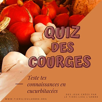 quiz courges.jpg