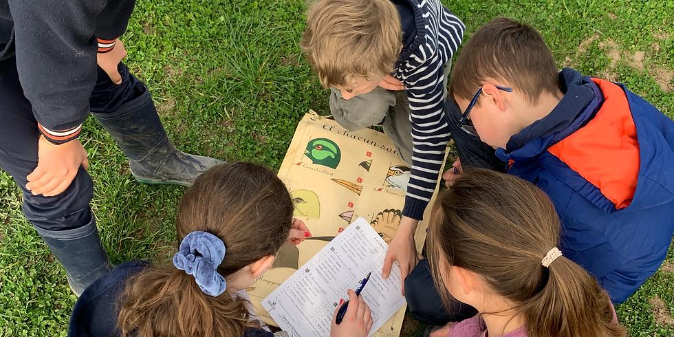 Atelier enfants : découverte des oiseaux du jardin