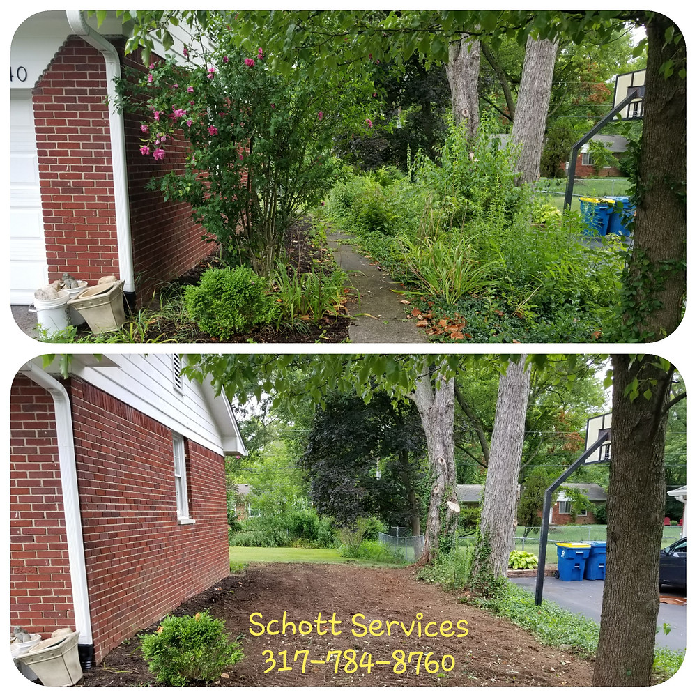 landscape removal, brush removal, shrub removal, yard debris clean up, haul away landscape debris, junk removal, yard waste removal,
