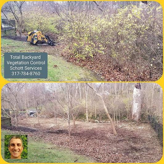 Vegetation Control, Landscape Removal