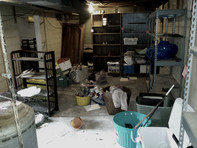 Indianapolis, Estate Clean Out, Estate, Hauling, Clean Up, Foreclosure Clean Out, REO, Clean Up, Clean Out, Junk Removal, Indianapolis Junk Removal, Best, Estate Cleaning, Junk Hauling, Foreclosed Property Cleaning, Real Estate Clean Out, Property Clean Up