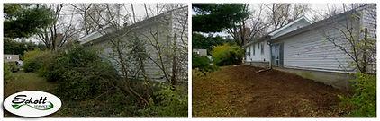 Collage Brush Removal (2).jpg