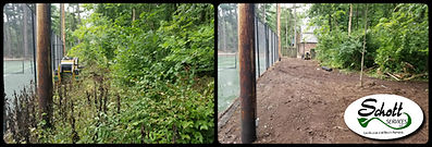 lot clearing near me, brush clearing, brush removal, Indianapolis
