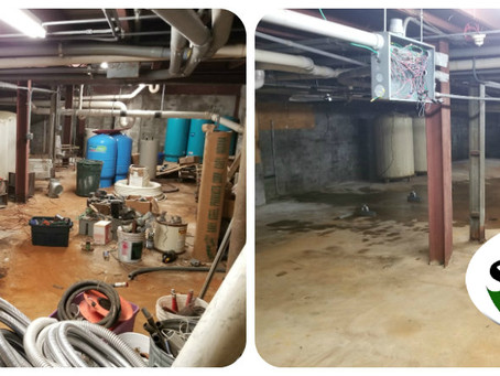 Dry Cleaning Basement Clean Out, Indy!
