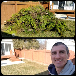 Schott Services provide brush removal, landscape removal, lot clearing, land clearing, deck removal, shed removal and brush cutting in Mooresville.