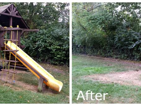 Old Playground Taking Up Yard Space?
