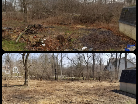 Brush Cutting & Brush Clearing Services- Serving the greater Indianapolis area!