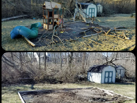 Dead Tree Destroyed Swing Set South Side Indy- We Remove It All!