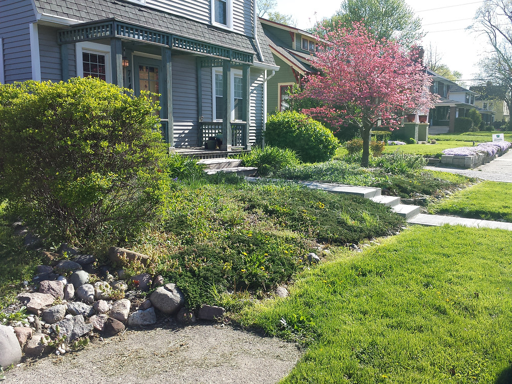 landscape removal, landscaping, bush removal, yard grading, grading, yard leveling, brush removal, rock removal, boulder removal, tree removal, Indianapolis, Avon, Geist, Speedway, Brownsburg, Fishers, Carmel